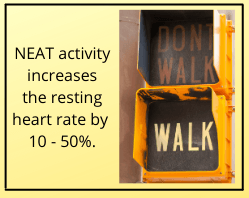 """Walk sign with text reading """"NEAT activity increases the resting heart rate by 10 - 50%"""""""