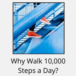 """Red sneakers going up blue stairs with text reading """"Why Walk 10,000 Steps a Day?"""""""